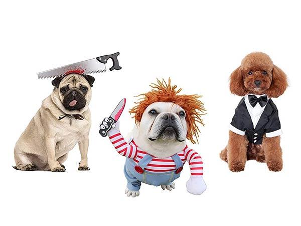 As Melhores e Mais Engraçadas Roupas e Fantasias para Cães